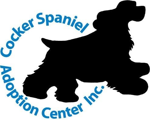 English Springer Spaniel Clipart