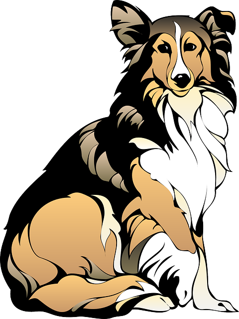 480x640 Collie Dog Clip Art Danasojcd.top Dog Clipart