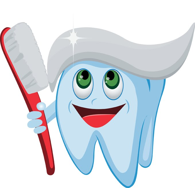 680x655 Dental Tooth Clipart