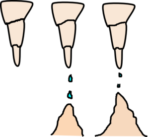 298x276 Stalactite And Stalagmite Clip Art