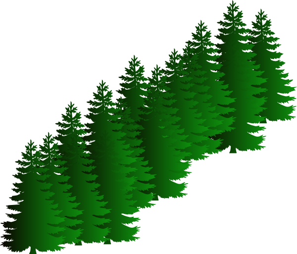 600x513 Evergreen Cluster Clip Art