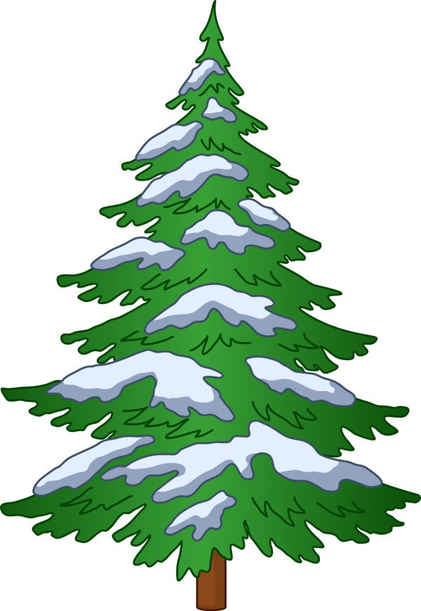Evergreen Tree Clipart at GetDrawings | Free download