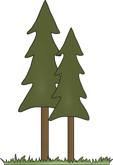 483x700 Tall Trees Clip Art Campingfreebies