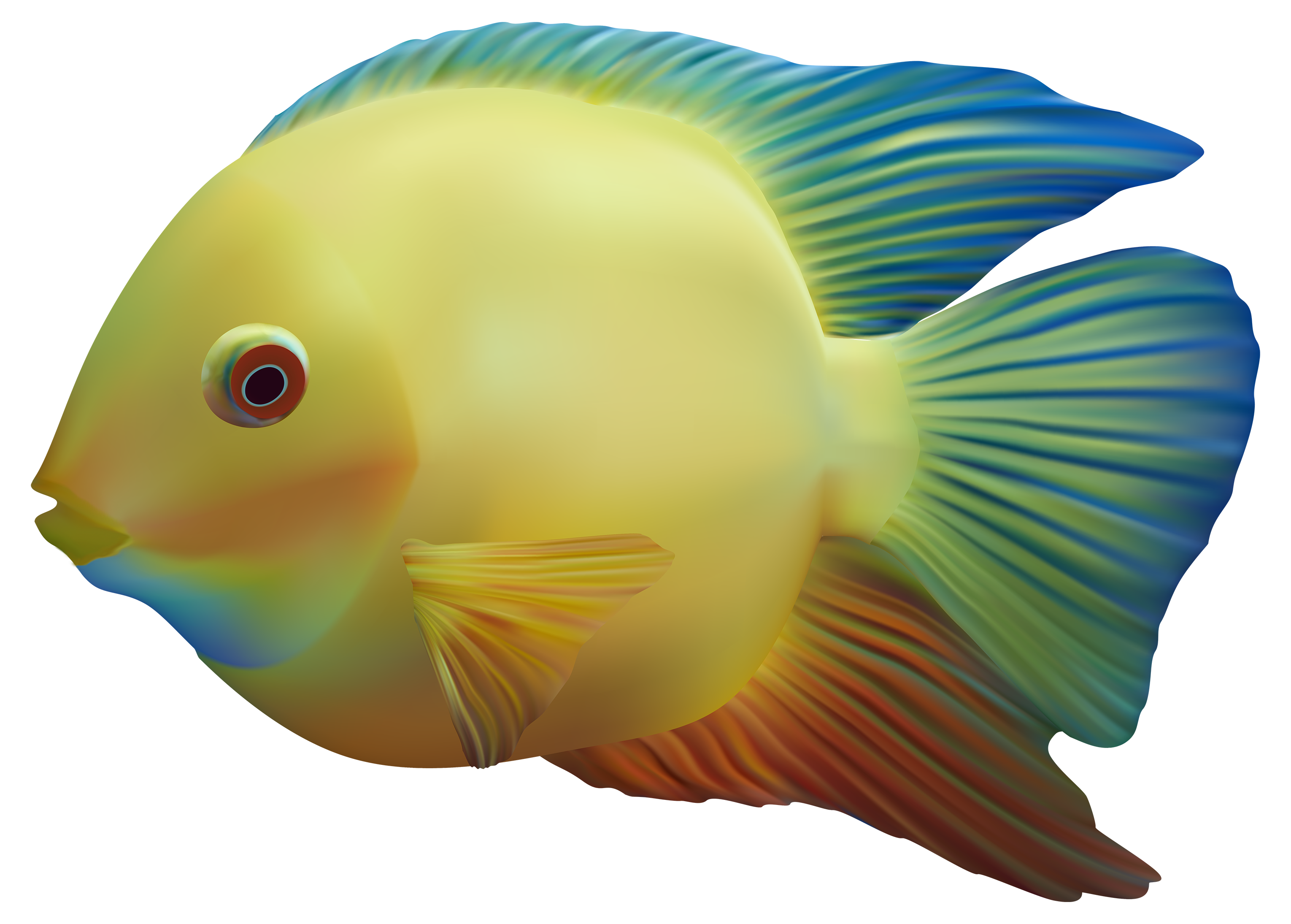 3060x2189 Exotic Fish Png Clipart