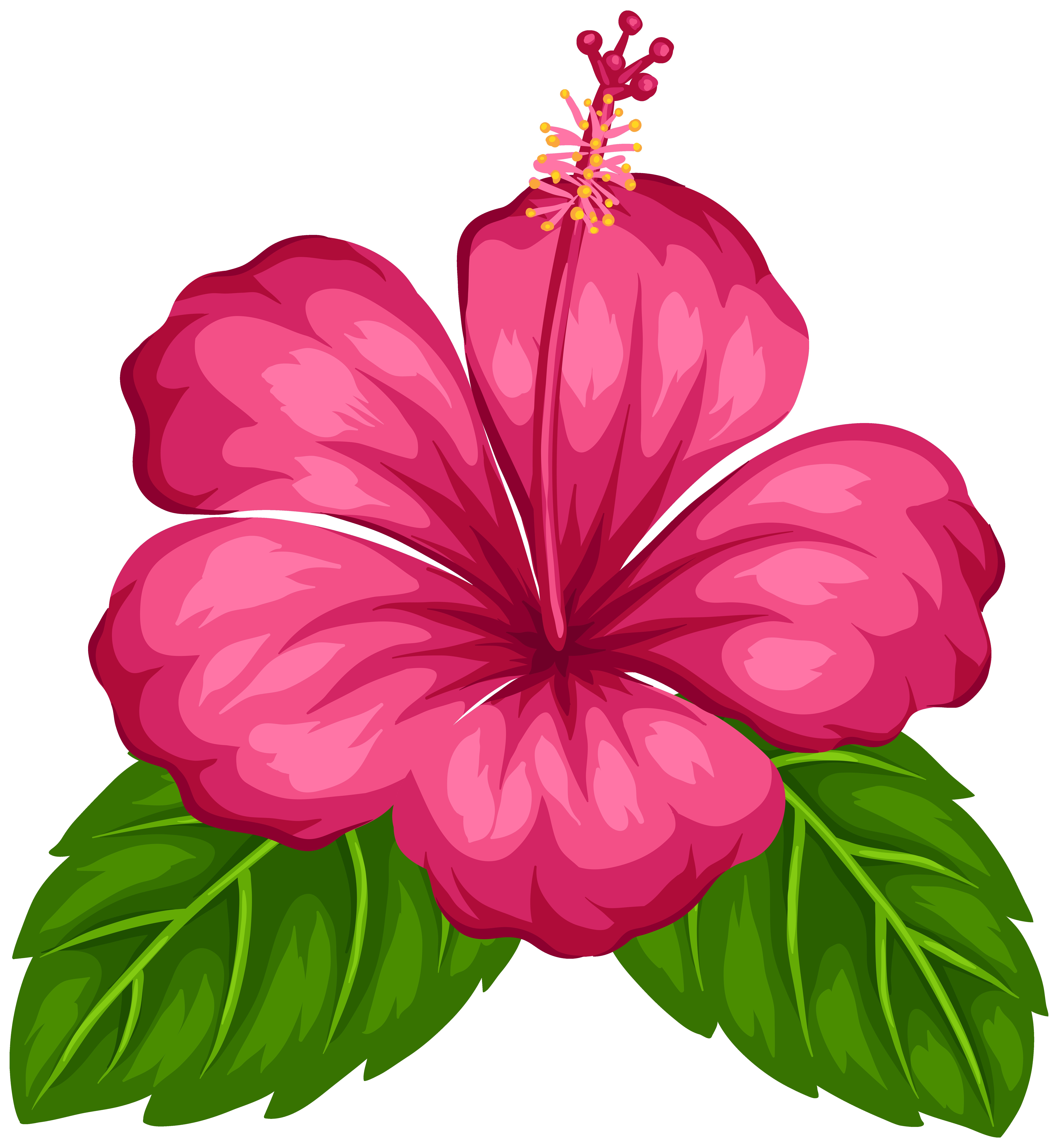 7375x8000 Exotic Flower Png Clip Art Best Web Clipart Stunning Flowers Png