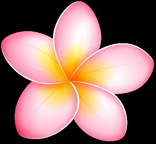 500x462 Clipart Exotic Flowers
