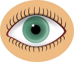eye clipart at getdrawings com free for personal use eye clipart rh getdrawings com eyes clip art cartoon eyes clip art cartoon