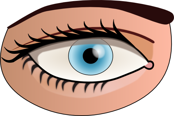 600x403 Collection Of Human Eyes Clipart For Kids High Quality, Free