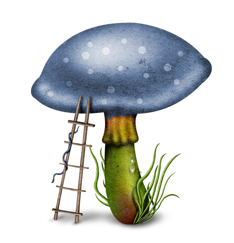 769x800 Shrooms ~ Toads Amp Toad Stools ~