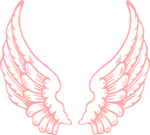 300x270 Pink Wings Clip Art