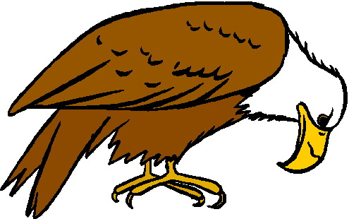 falcon clipart at getdrawings com free for personal use falcon rh getdrawings com falcon clipart free falcon clipart images