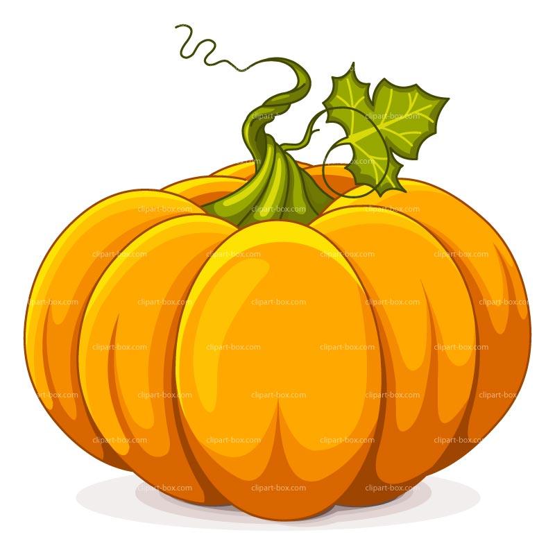 800x800 Pumpkin Clip Art Images Fun For Christmas