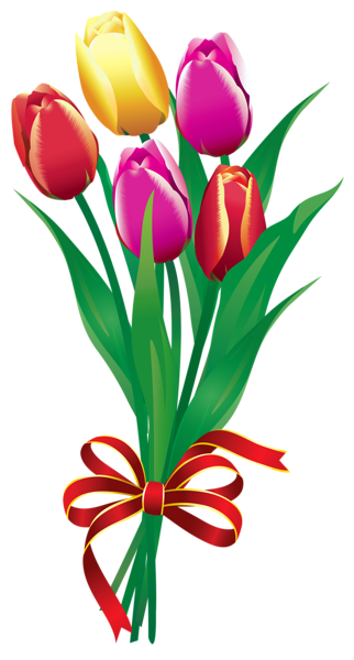322x600 Spring Tulips Bouquet Png Clipart Picture Clipart