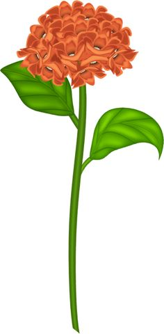 236x480 Lily Clipart Lily Flower Clip Art Flowers Clip