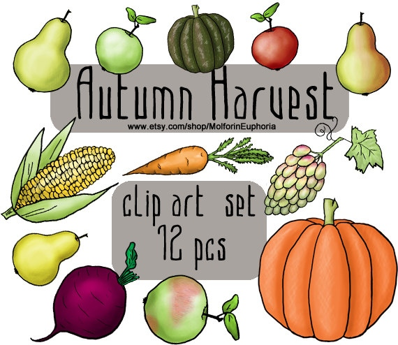 570x494 Fall Harvest Clipart Free Download Clip Art