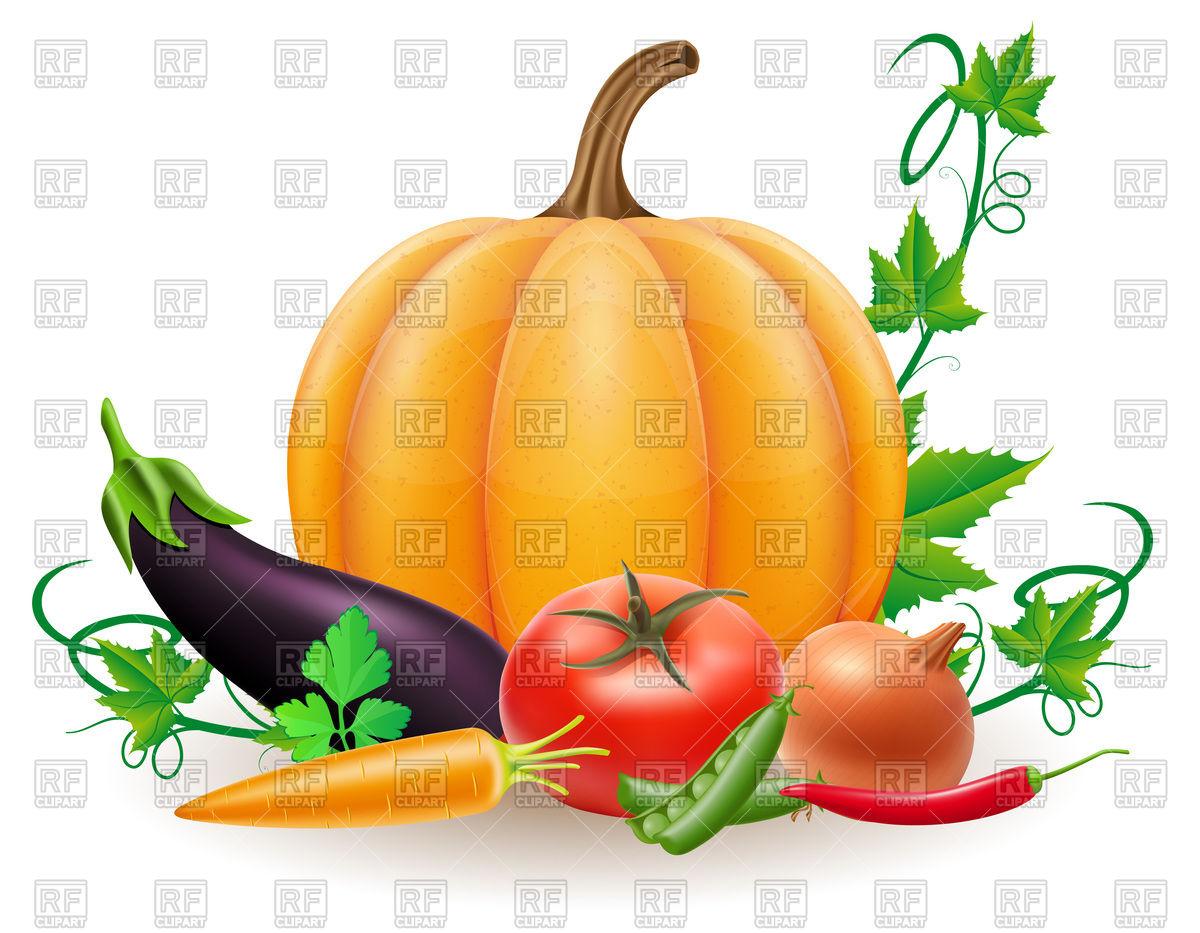 1200x933 Pumpkin And Autumn Harvest Vegetables Royalty Free Vector Clip Art
