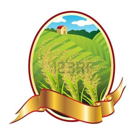 450x450 Rice Harvest Clipart