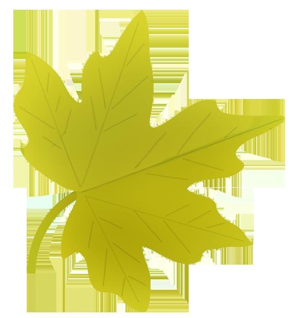 587x620 Autumn Leaves Clipart Fall Leaves Clip Art Beautiful Autumn