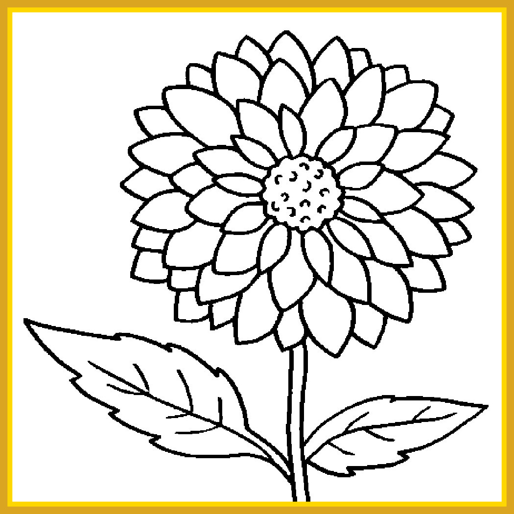 1050x1050 Printable Picture Sunflower Pictures To Color [Printable