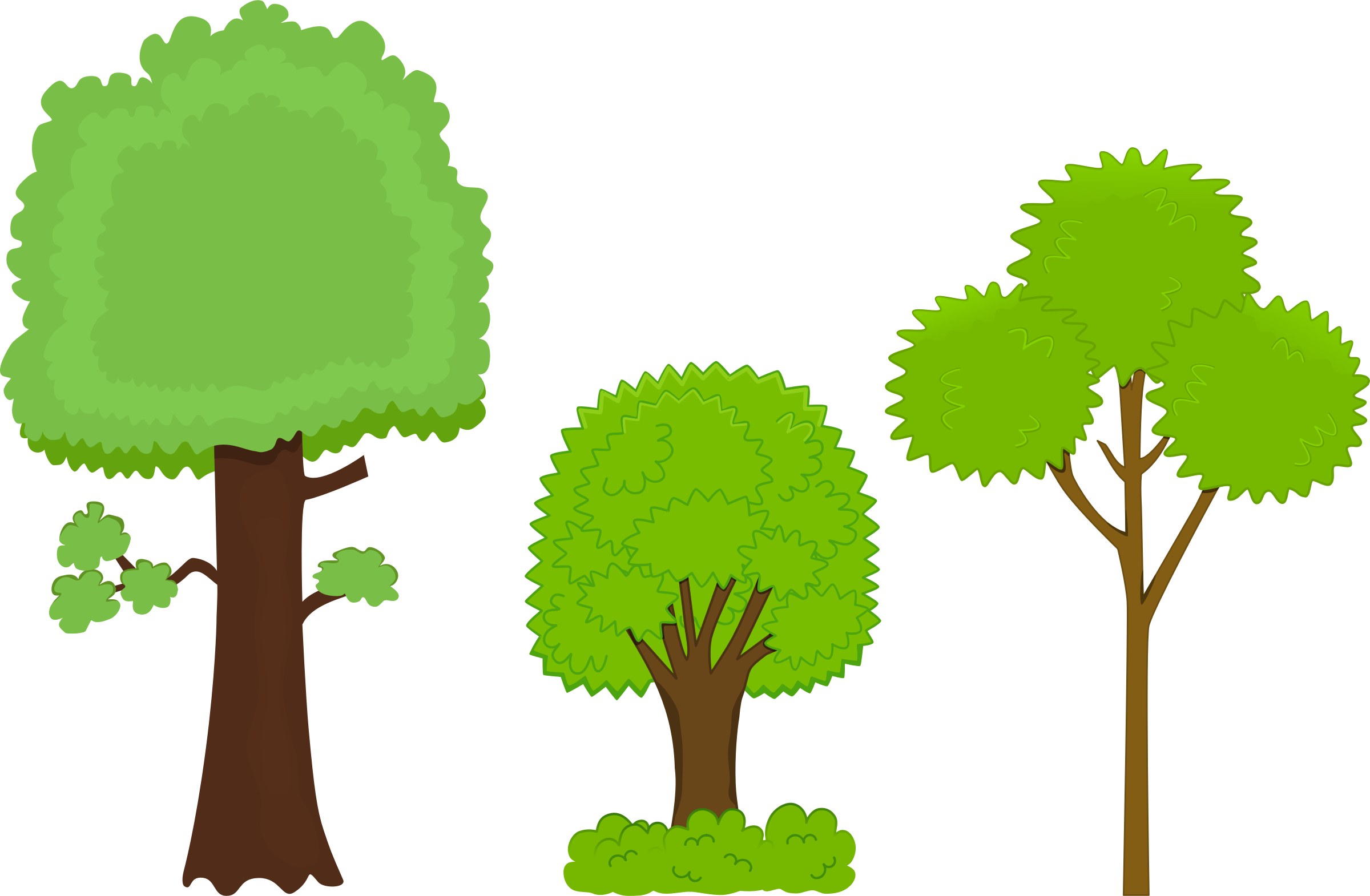 2400x1570 Guaranteed Clipart Pictures Of Trees Family Tree Genealoy