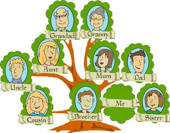 570x446 Pictures Of Family Trees