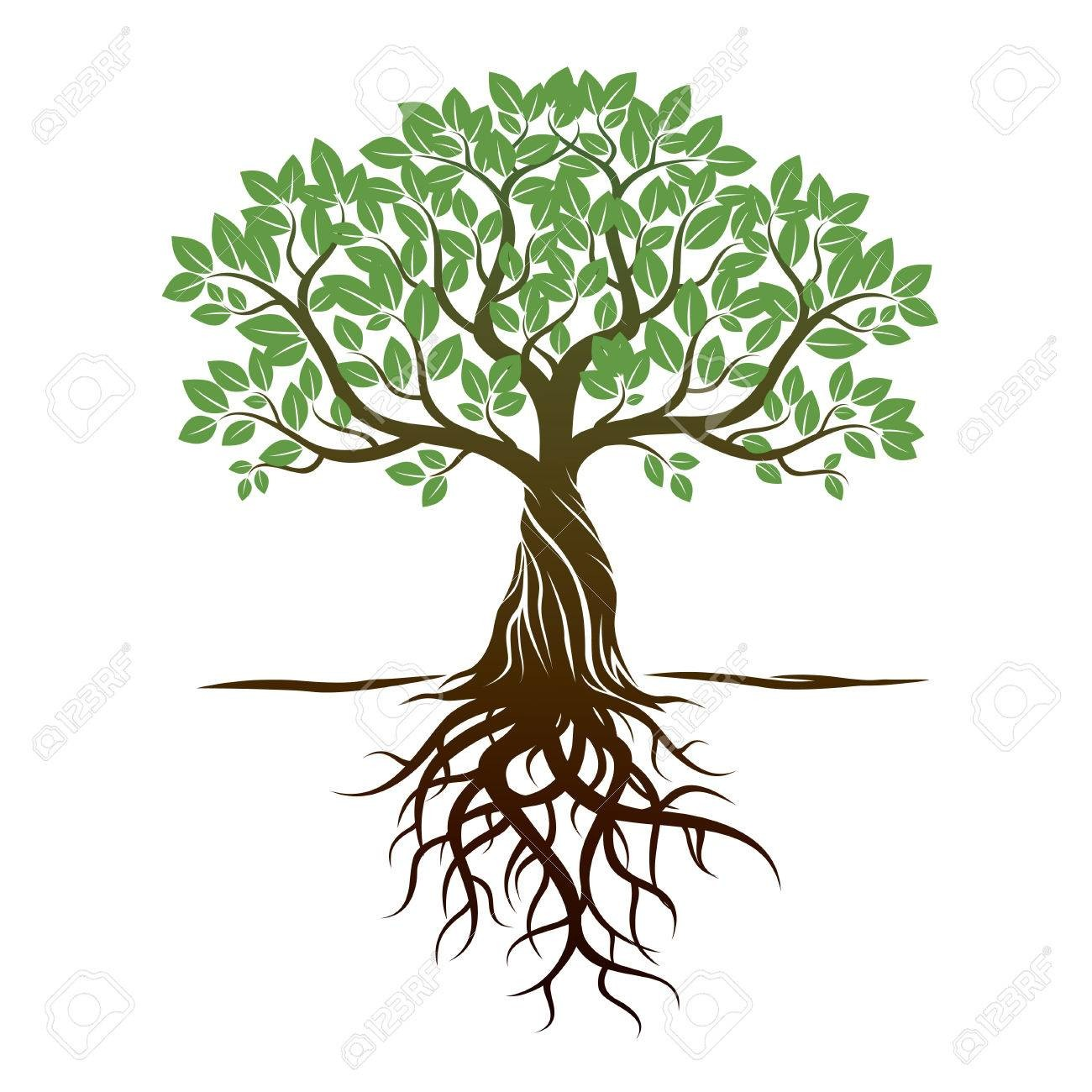 family tree clipart at getdrawings