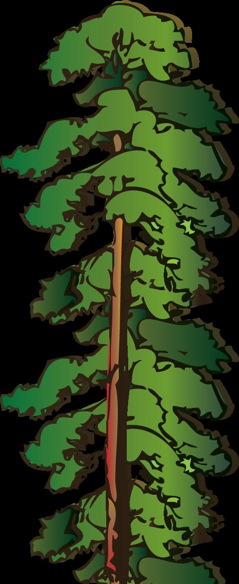 479x1171 Pine Tree Silhouette Clipart Kid 2