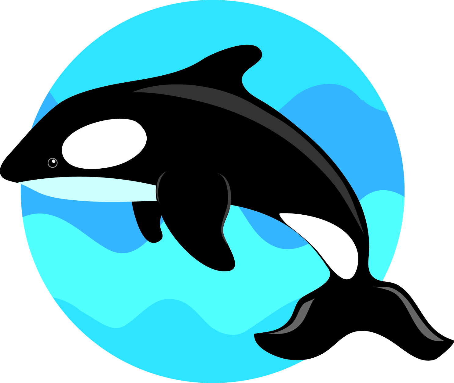 1486x1256 Whale Clipart Orca Free Collection Download And Share Whale