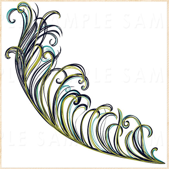570x570 Peacock Feather Clipart