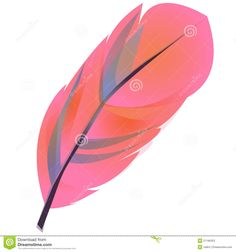 236x252 Wispy Pink Feather Clip Art Illustrations On Creative Market