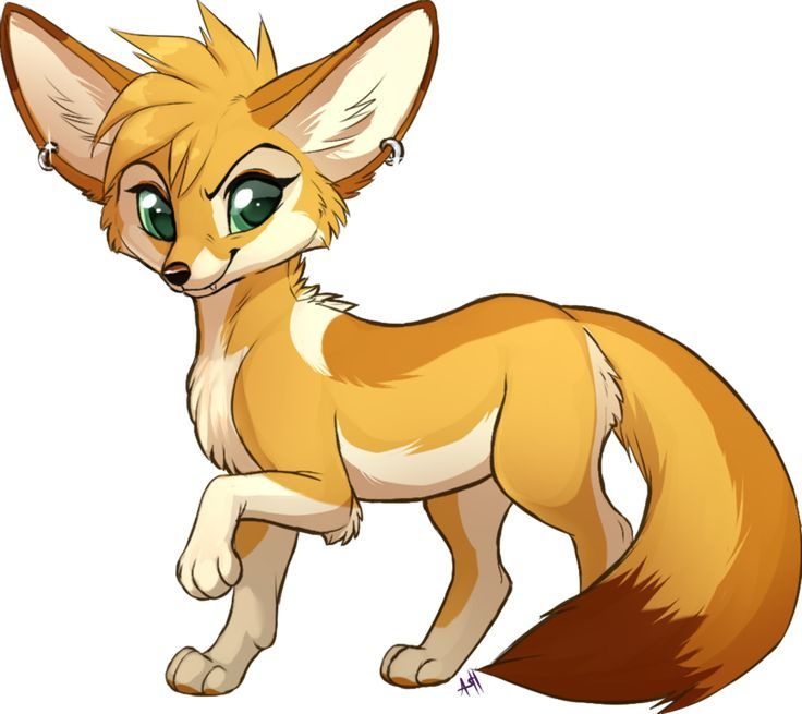 736x655 Image Result For Desert Fox Animal Clipart Kats Things To Buy