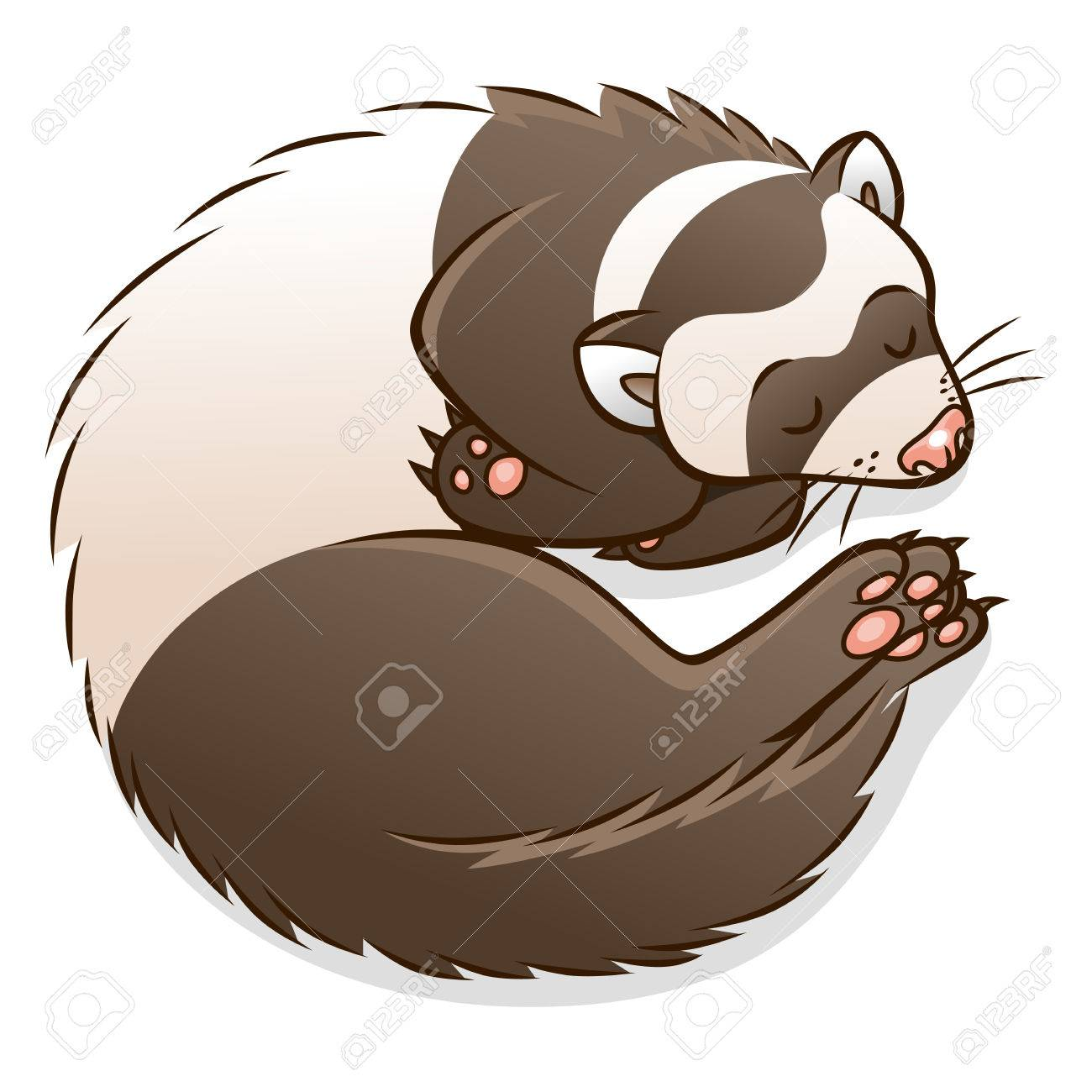 1300x1300 Ferret Clipart Cartoon