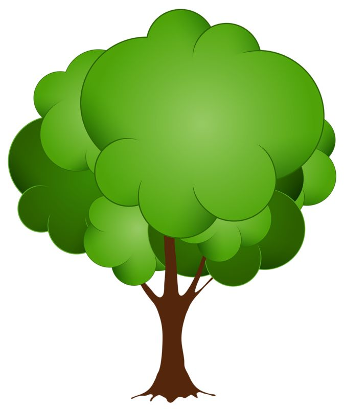 Fig Tree Clipart