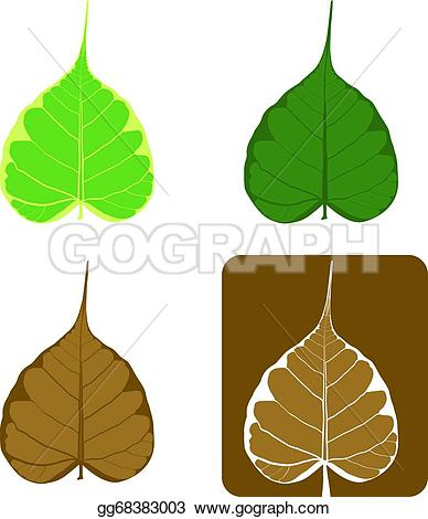 388x470 Sacred Fig Leaf Clipart