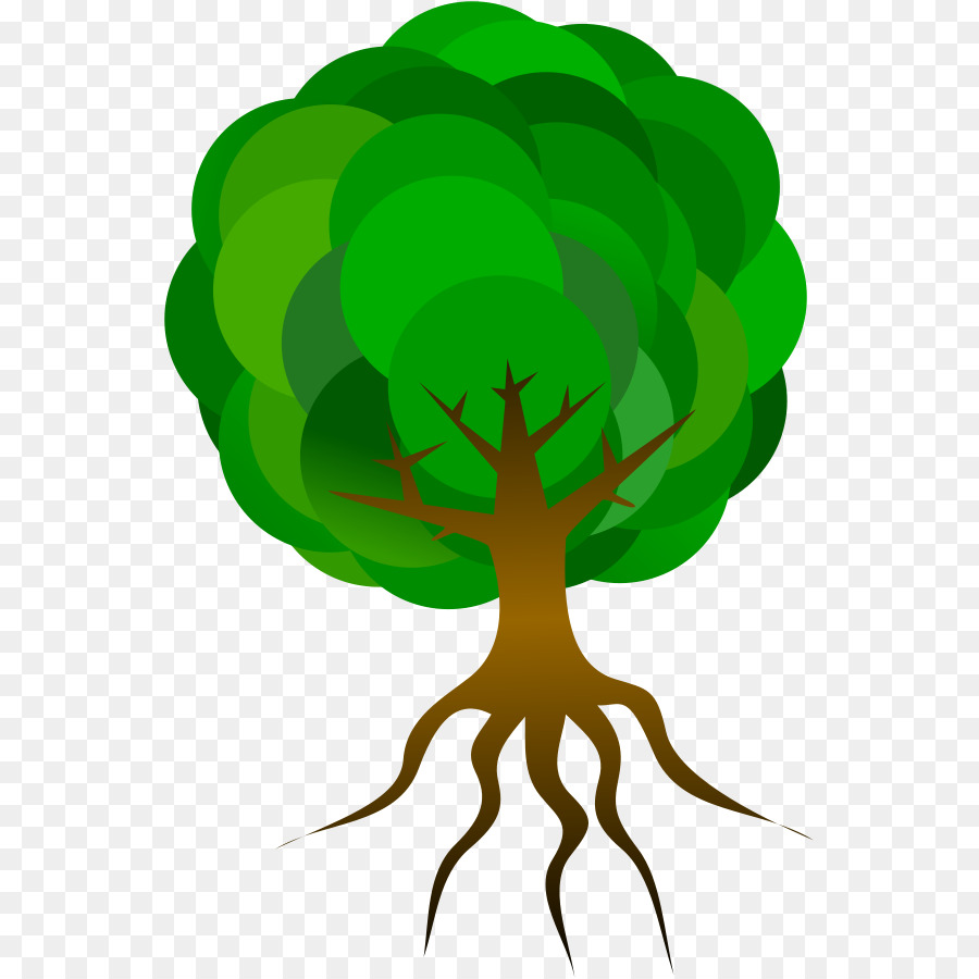 900x900 Tree Root Clip Art