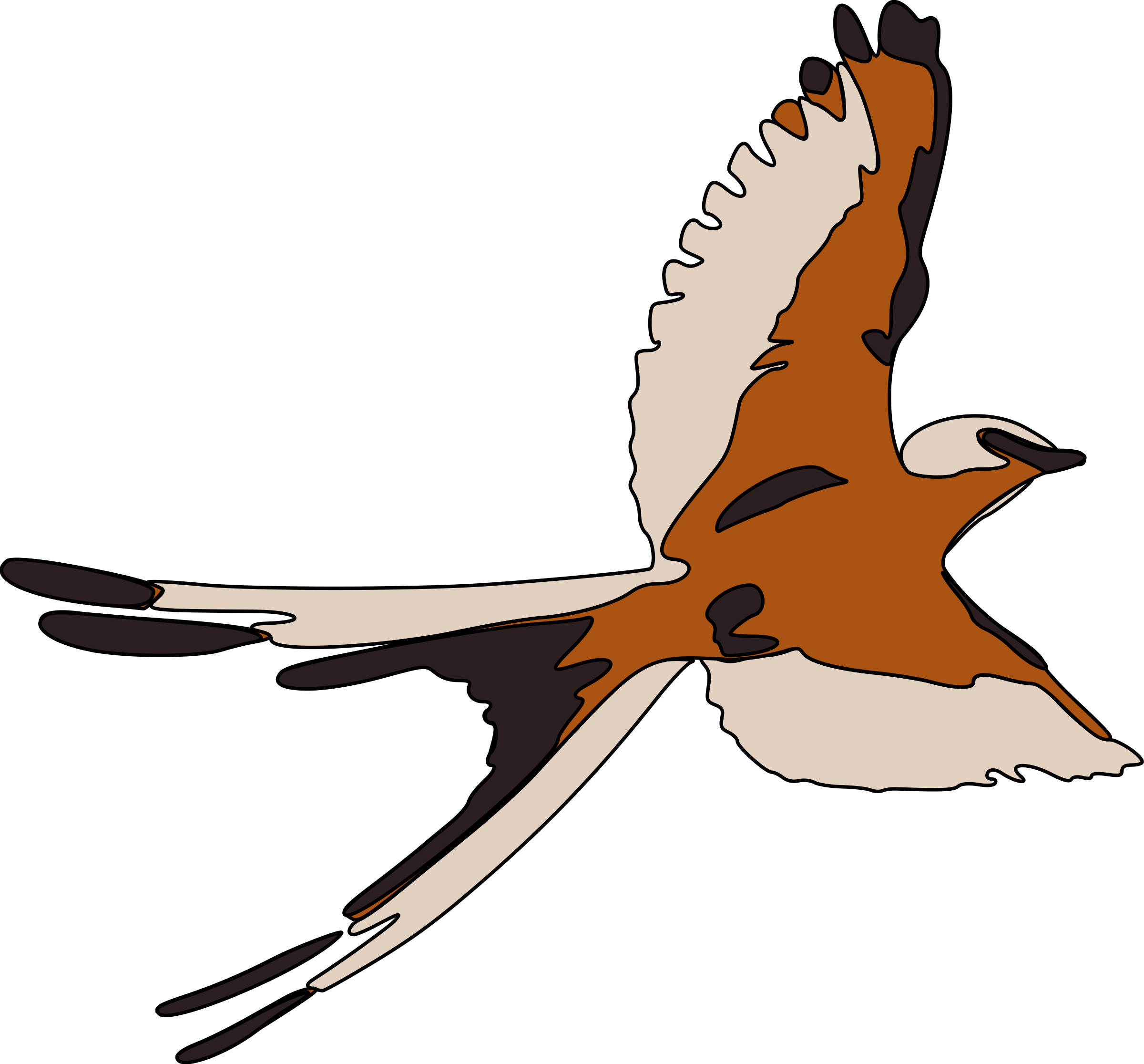 2400x2231 Finch Clipart Maya Bird Pencil And In Color
