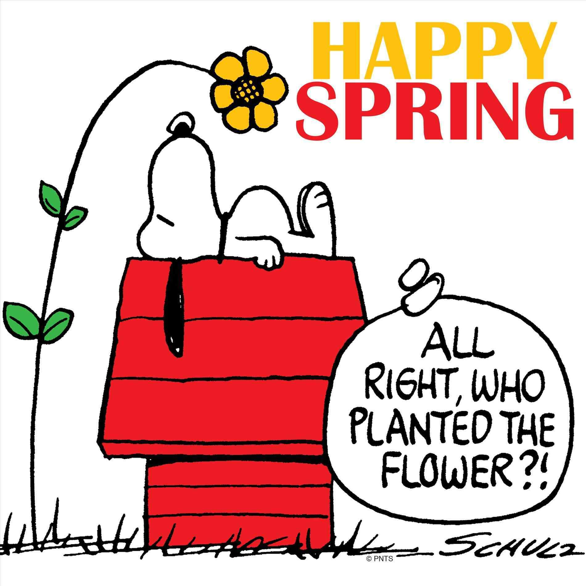 1900x1900 Free Clipart First Day Of Spring Your Meme Source