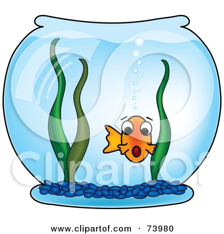 450x470 Royalty Free (Rf) Goldfish Clipart, Illustrations, Vector Graphics