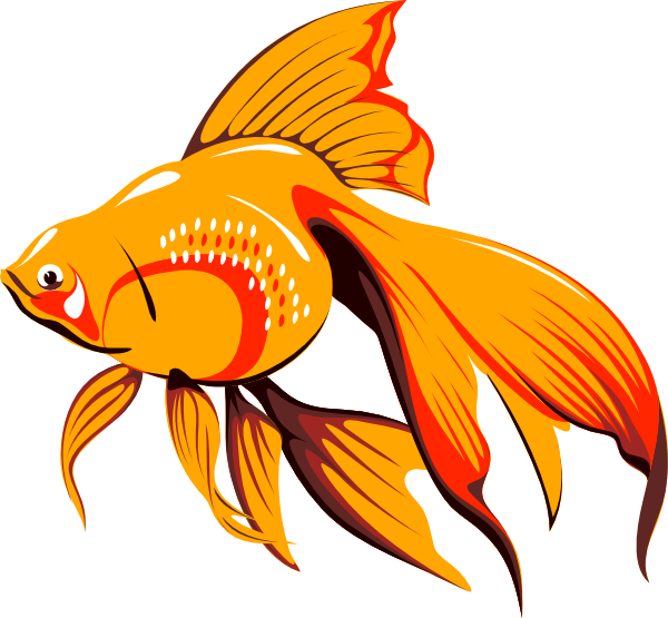 600x555 Breathtaking Goldfish Clipart Big Image Png Black And White Images