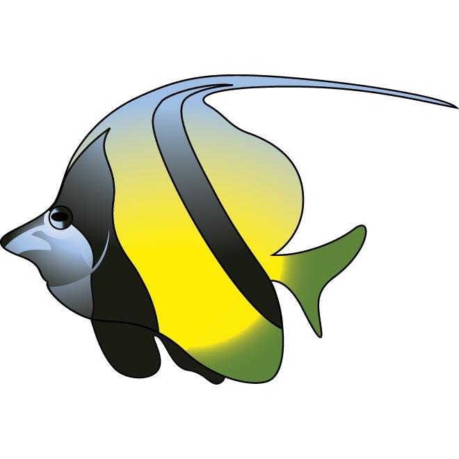 660x660 Colorful Fish Clip Art Clipart Panda