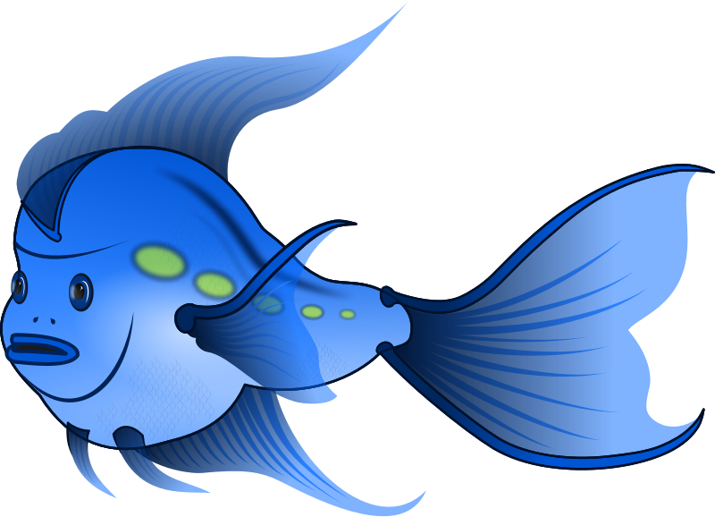 800x578 Image Of Cute Fish Clipart