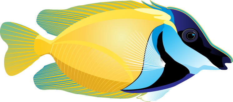 746x328 Craft Sites For Kids Clip Art Fish