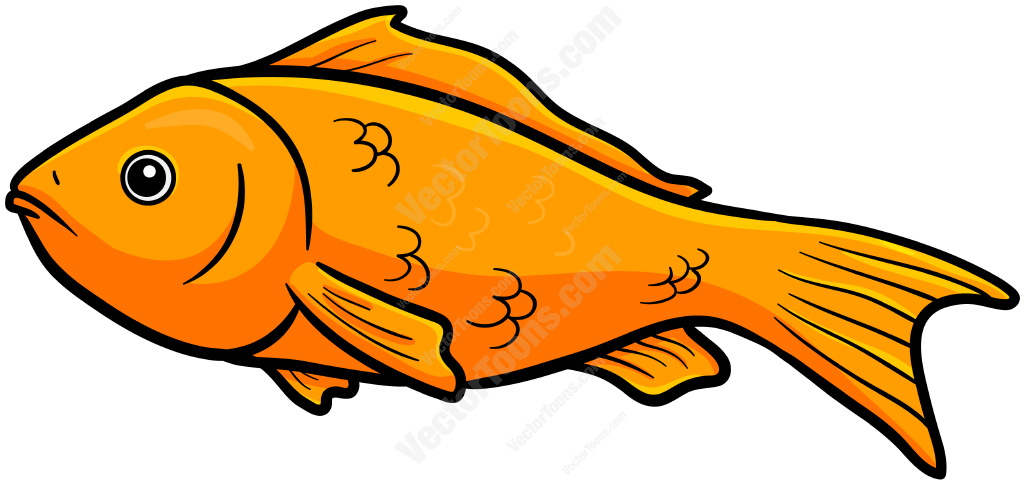 1024x484 Fish Cartoons Pictures Group