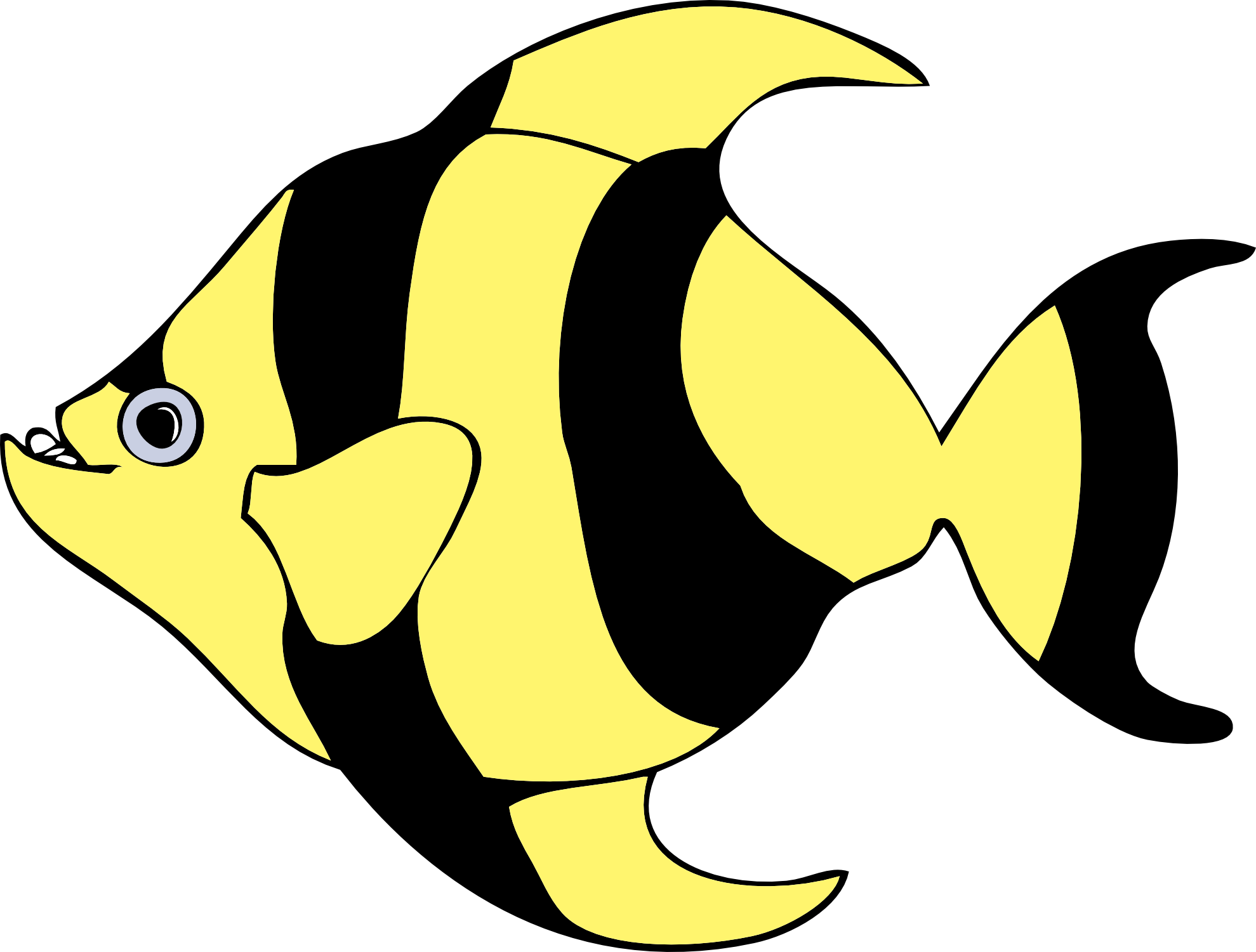 1979x1501 Image Of Tropical Fish Clipart