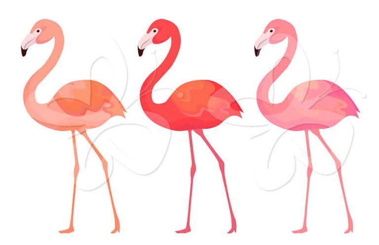 768x497 Pink Flamingo Clipart Flamingo Clip Art Free Clipart Panda Free