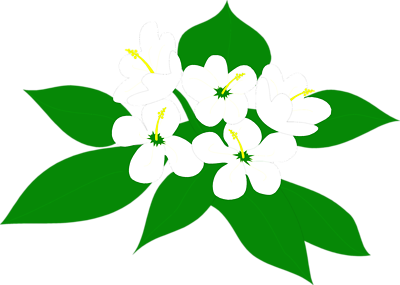 400x285 Magnolia Blossom Clip Art. Red Rose Isolated On White Background