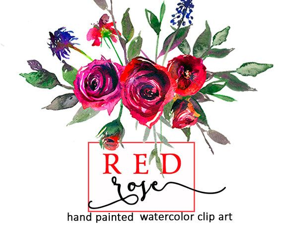 570x456 Red Roses Watercolor Digital Floral Clipart Bourgundy Purple