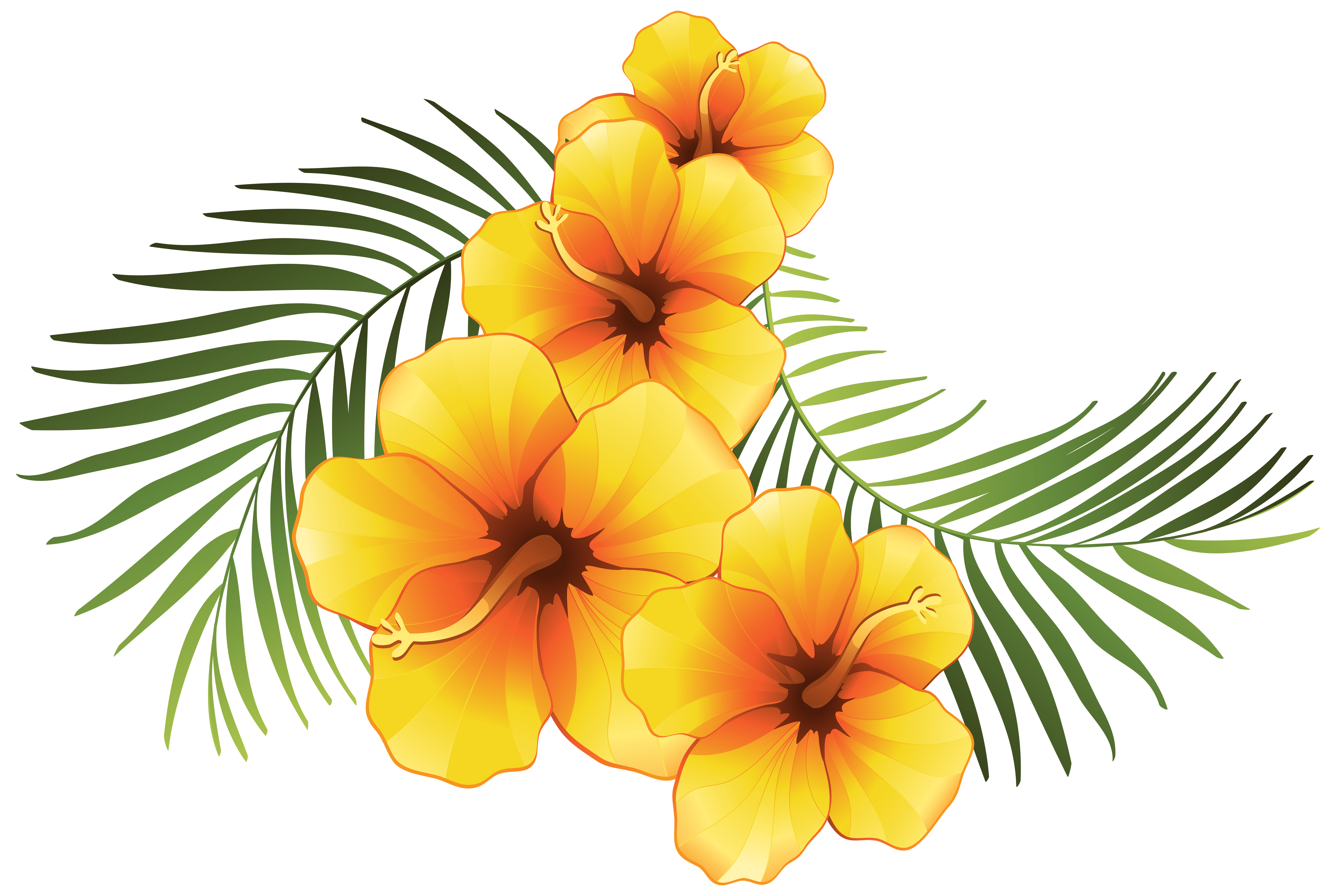 Floral Clipart At Getdrawings Free For Personal Use Floral