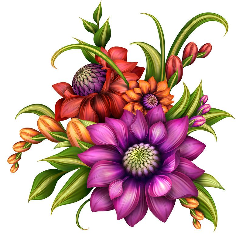 800x800 Flower Arrangement Clipart Free Download Clip Art