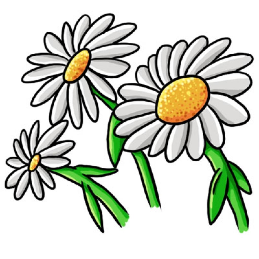 1024x1024 Flower Power Daisy Clip Art At Clker Com Vector Online Clipart